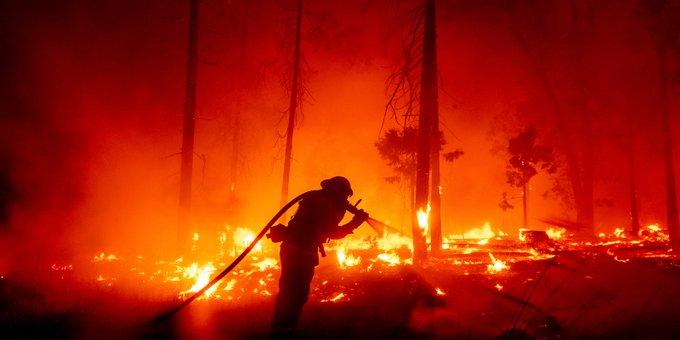 Ondata di caldo in Canada: I fulmini provocano incendi da record nella Columbia Britannica - Avanti live